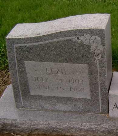 ALEXANDER, ELZIE - Lawrence County, Arkansas | ELZIE ALEXANDER - Arkansas Gravestone Photos
