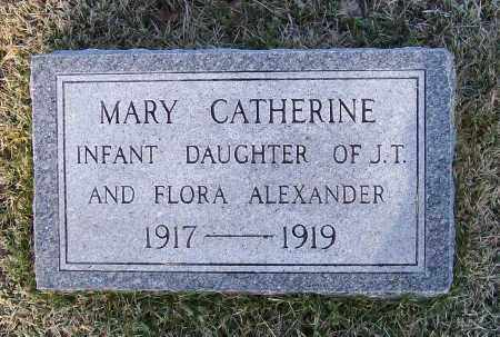 ALEXANDER, MARY CATHERINE - Lawrence County, Arkansas | MARY CATHERINE ALEXANDER - Arkansas Gravestone Photos