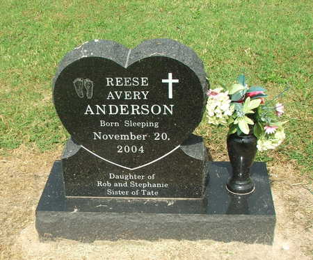 ANDERSON, REESE AVERY - Lawrence County, Arkansas | REESE AVERY ANDERSON - Arkansas Gravestone Photos
