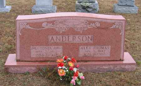 "ANDERSON (VETERAN CSA), ALEXANDER ""ALEX"" THOMAS - Lawrence County, Arkansas 