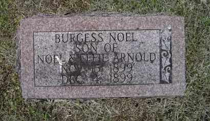 ARNOLD, BURGESS NOEL - Lawrence County, Arkansas | BURGESS NOEL ARNOLD - Arkansas Gravestone Photos