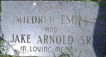 ARNOLD, UNKNOWN - Lawrence County, Arkansas | UNKNOWN ARNOLD - Arkansas Gravestone Photos