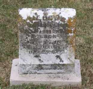 BABER, LUCY - Lawrence County, Arkansas | LUCY BABER - Arkansas Gravestone Photos