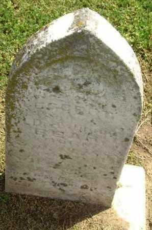 BEAR, EGBERT - Lawrence County, Arkansas | EGBERT BEAR - Arkansas Gravestone Photos