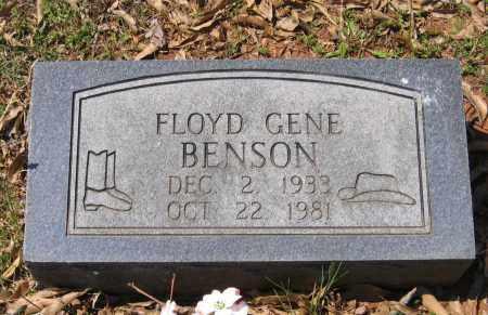 BENSON, JR., FLOYD GENE - Lawrence County, Arkansas | FLOYD GENE BENSON, JR. - Arkansas Gravestone Photos