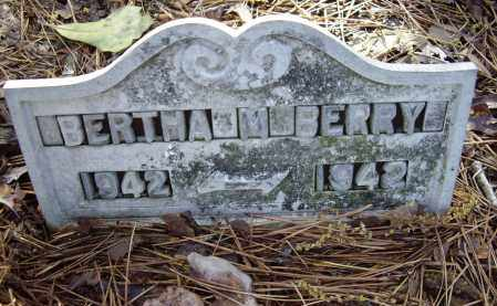 BERRY, BERTHA - Lawrence County, Arkansas | BERTHA BERRY - Arkansas Gravestone Photos