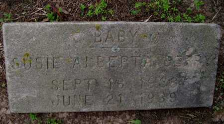 BERRY, SUSIE ALBERTA - Lawrence County, Arkansas | SUSIE ALBERTA BERRY - Arkansas Gravestone Photos
