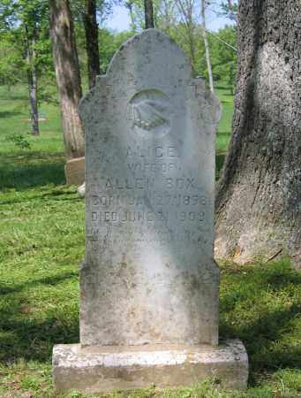 BOX, ALICE - Lawrence County, Arkansas | ALICE BOX - Arkansas Gravestone Photos