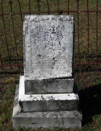 "RANEY BRADY, LEAH LAVINIA ""LEE"" - Lawrence County, Arkansas 