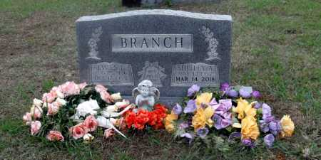 BRANCH, JAMES LANDON - Lawrence County, Arkansas | JAMES LANDON BRANCH - Arkansas Gravestone Photos