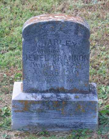 BRANNON, CHARLEY M. - Lawrence County, Arkansas | CHARLEY M. BRANNON - Arkansas Gravestone Photos