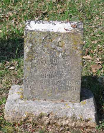 BRIDGES, JENNIE B. - Lawrence County, Arkansas | JENNIE B. BRIDGES - Arkansas Gravestone Photos