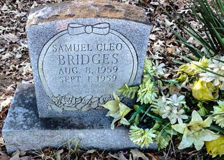 BRIDGES, SAMUEL CLEO - Lawrence County, Arkansas | SAMUEL CLEO BRIDGES - Arkansas Gravestone Photos
