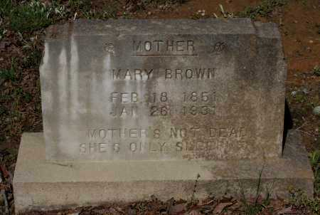 BROWN, MARY LUCY ANDERSON CULLINDER - Lawrence County, Arkansas | MARY LUCY ANDERSON CULLINDER BROWN - Arkansas Gravestone Photos