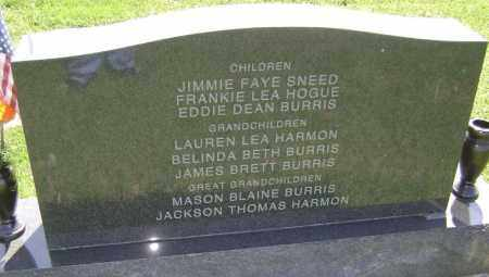 BURRIS, JAMES - Lawrence County, Arkansas | JAMES BURRIS - Arkansas Gravestone Photos