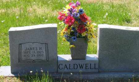 CALDWELL, JAMES H. - Lawrence County, Arkansas | JAMES H. CALDWELL - Arkansas Gravestone Photos