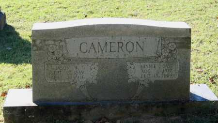 CAMERON, JASON WINFIELD - Lawrence County, Arkansas | JASON WINFIELD CAMERON - Arkansas Gravestone Photos