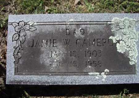 CAMERON, JAMIE WARREN - Lawrence County, Arkansas   JAMIE WARREN CAMERON - Arkansas Gravestone Photos