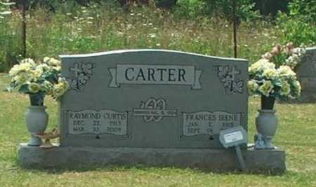 CARTER, FRANCES IRENE - Lawrence County, Arkansas | FRANCES IRENE CARTER - Arkansas Gravestone Photos