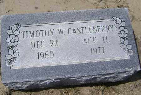 CASTLEBERRY, TIMOTHY W - Lawrence County, Arkansas | TIMOTHY W CASTLEBERRY - Arkansas Gravestone Photos