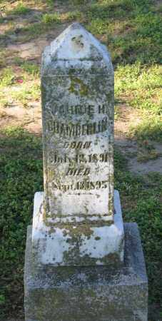 CHAMBERLIN, JOHNIE H. - Lawrence County, Arkansas | JOHNIE H. CHAMBERLIN - Arkansas Gravestone Photos
