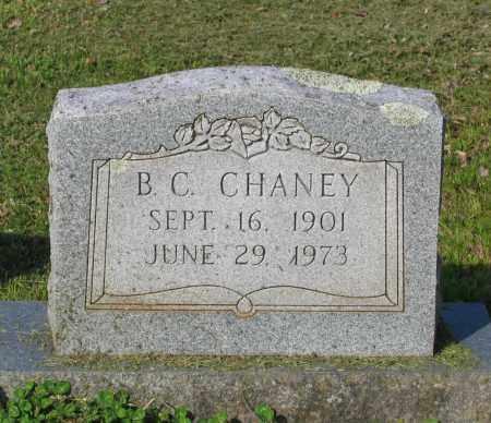 CHANEY, B. C. - Lawrence County, Arkansas | B. C. CHANEY - Arkansas Gravestone Photos