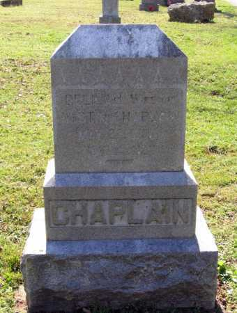 CHAPLAIN, DORCUS DELILAH - Lawrence County, Arkansas | DORCUS DELILAH CHAPLAIN - Arkansas Gravestone Photos