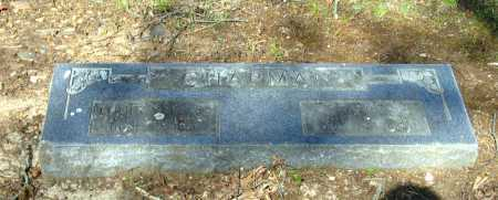 CHAPMAN, CARRIE N. - Lawrence County, Arkansas | CARRIE N. CHAPMAN - Arkansas Gravestone Photos