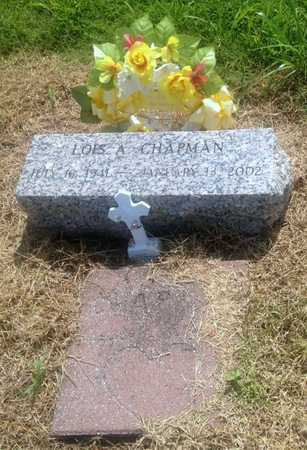 CHAPMAN, LOIS ANN - Lawrence County, Arkansas | LOIS ANN CHAPMAN - Arkansas Gravestone Photos