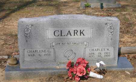 CLARK, CHARLES WILLIAM - Lawrence County, Arkansas | CHARLES WILLIAM CLARK - Arkansas Gravestone Photos