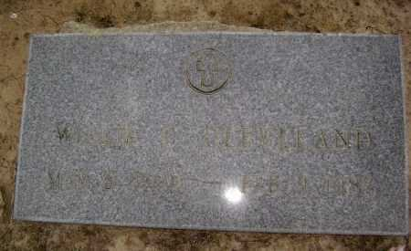 TATE CLEVELAND, WILLIE CHRISTIANA - Lawrence County, Arkansas | WILLIE CHRISTIANA TATE CLEVELAND - Arkansas Gravestone Photos