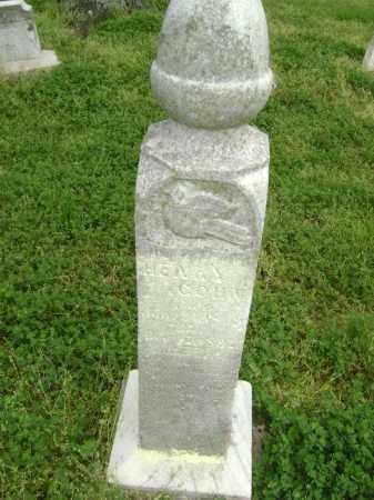 COHN, HENRY - Lawrence County, Arkansas   HENRY COHN - Arkansas Gravestone Photos