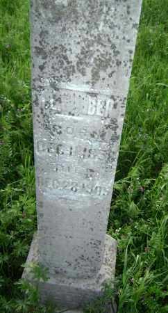 COLBERT, W. E. - Lawrence County, Arkansas | W. E. COLBERT - Arkansas Gravestone Photos
