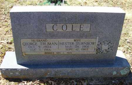 TURNBOW COLE, HESTER - Lawrence County, Arkansas | HESTER TURNBOW COLE - Arkansas Gravestone Photos