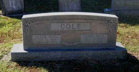 COLE, GUSSIE - Lawrence County, Arkansas | GUSSIE COLE - Arkansas Gravestone Photos