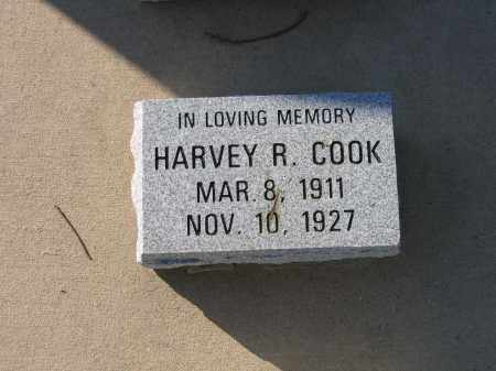 COOK, HARVEY R. - Lawrence County, Arkansas | HARVEY R. COOK - Arkansas Gravestone Photos