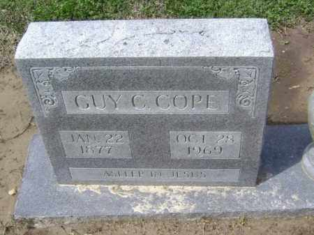 COPE, GUY CLIFFORD - Lawrence County, Arkansas | GUY CLIFFORD COPE - Arkansas Gravestone Photos