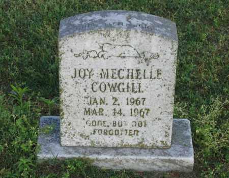 COWGILL, JOY MECHELLE - Lawrence County, Arkansas | JOY MECHELLE COWGILL - Arkansas Gravestone Photos