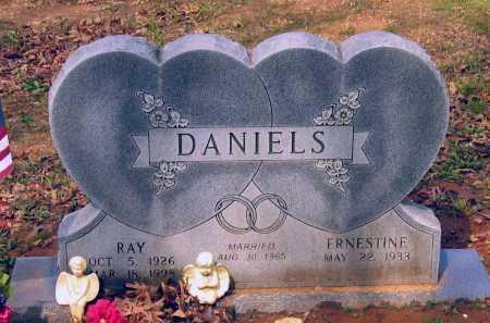 DANIELS, WILLIE RAY - Lawrence County, Arkansas | WILLIE RAY DANIELS - Arkansas Gravestone Photos