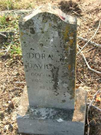 DAVIDSON, DORA W. - Lawrence County, Arkansas | DORA W. DAVIDSON - Arkansas Gravestone Photos