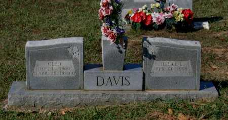 DAVIS, BIRDIE L. - Lawrence County, Arkansas | BIRDIE L. DAVIS - Arkansas Gravestone Photos