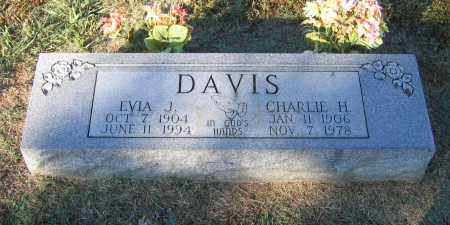 RICHEY DAVIS, EVIA JANE - Lawrence County, Arkansas | EVIA JANE RICHEY DAVIS - Arkansas Gravestone Photos