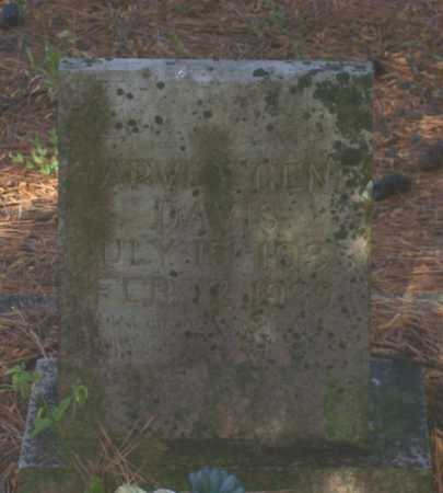 DAVIS, HARVEY GENE - Lawrence County, Arkansas | HARVEY GENE DAVIS - Arkansas Gravestone Photos