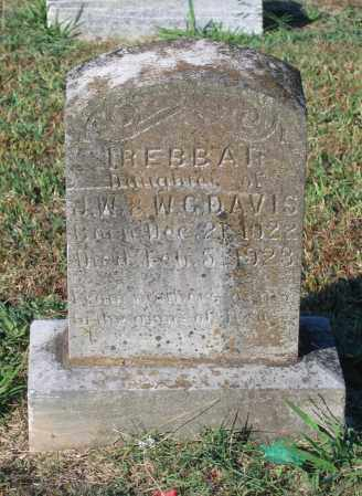 DAVIS, IREBBA H. - Lawrence County, Arkansas | IREBBA H. DAVIS - Arkansas Gravestone Photos