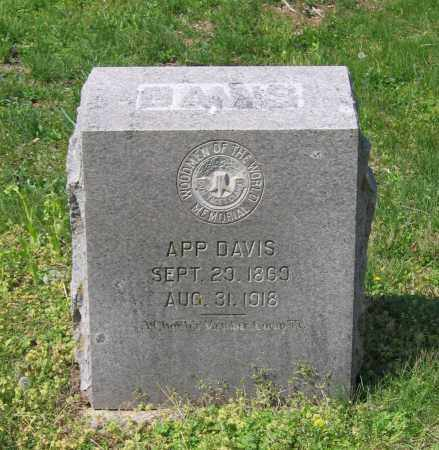 "DAVIS, JOHN A. ""APP"" - Lawrence County, Arkansas | JOHN A. ""APP"" DAVIS - Arkansas Gravestone Photos"