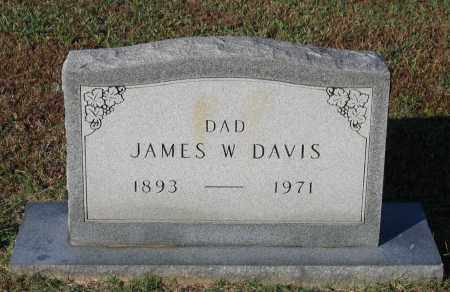 DAVIS, JAMES WASHINGTON - Lawrence County, Arkansas | JAMES WASHINGTON DAVIS - Arkansas Gravestone Photos