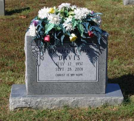 DAVIS, MICHAEL DEWAIN - Lawrence County, Arkansas | MICHAEL DEWAIN DAVIS - Arkansas Gravestone Photos