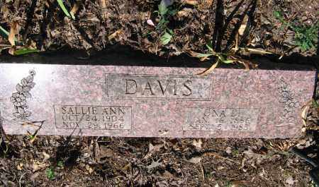 DAVIS, SALLIE ANN - Lawrence County, Arkansas | SALLIE ANN DAVIS - Arkansas Gravestone Photos