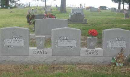 DAVIS, ROBERT ALLEN - Lawrence County, Arkansas | ROBERT ALLEN DAVIS - Arkansas Gravestone Photos