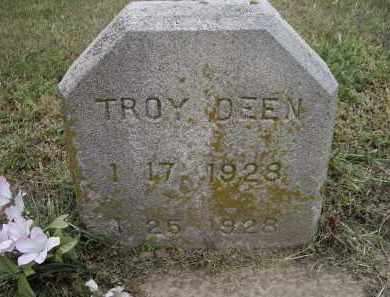 DEEN, TROY - Lawrence County, Arkansas | TROY DEEN - Arkansas Gravestone Photos